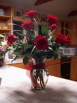 red long-stemmed roses
