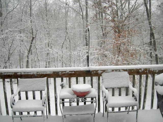 Back deck (morning 20090120)