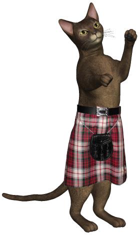 Cat in a Kilt